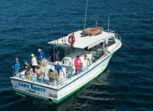 What is a head boat pure naples for Deep sea fishing naples fl