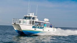 seaflight1-2